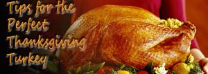 ThanksgivingTurkeyHorz
