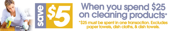 Cleaning25for5_EmailHeader550x100