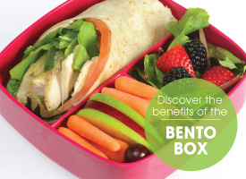 ARO_BackToSchool_EmailArt_BentoBox_275X200