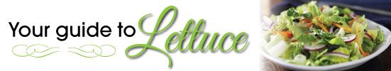 ARO_1228_Lettuce_EmailArt_Lettuce_550x100_Blog_Plus