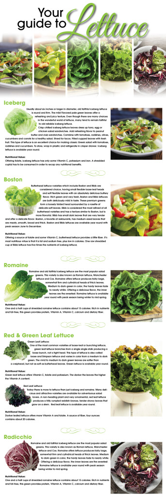 ARO_Lettuce_BlogArt_Varieties
