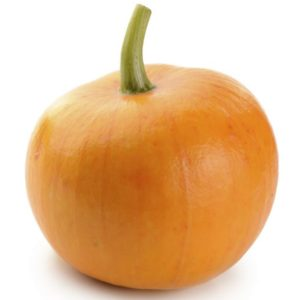 mini-pumpkin-smaller