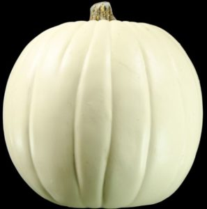 white-pumpkin-smaller