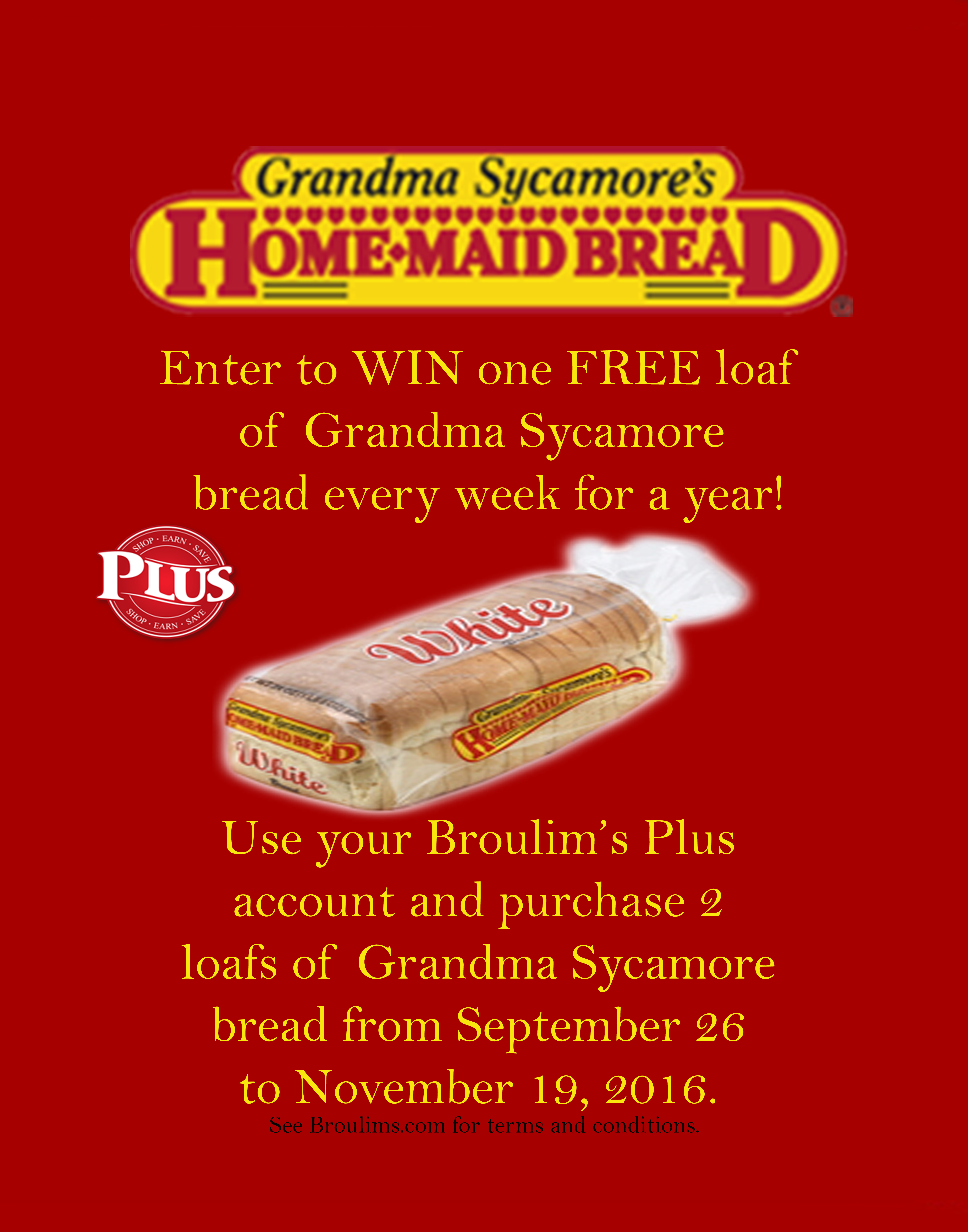 grandma-sycamore-plus-promo