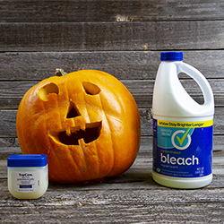 Jack-O-Lantern with Bleach and Vaseline to Prevent Wilting