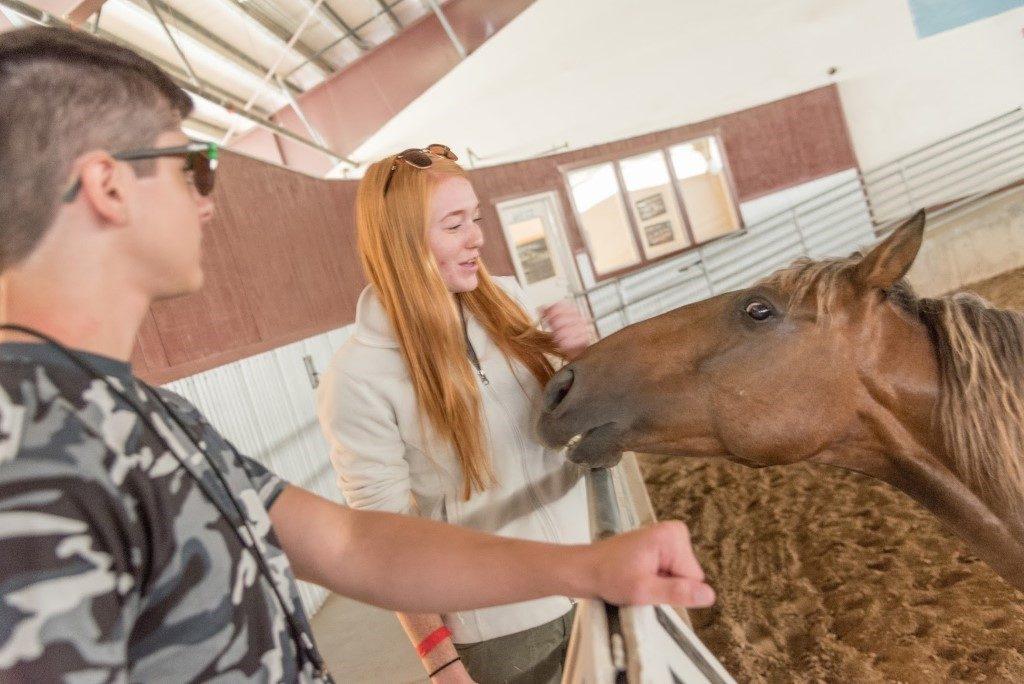 Children petting a horse.