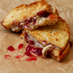 Turkey, Cranberry and Brie Grilled Cheese