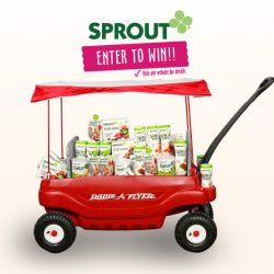 Sprout Giveaway
