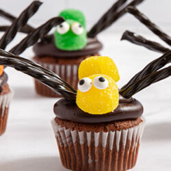 Food Club Spider Cupcakes