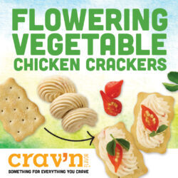 Vegetable Chicken Crackers